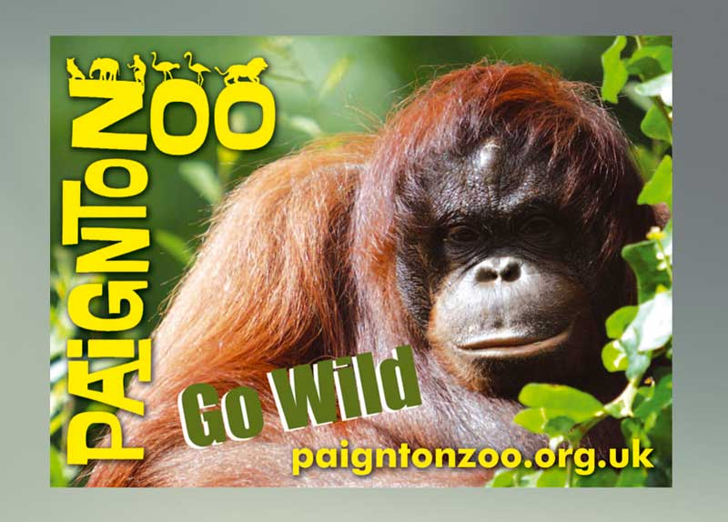 Paignton Zoo Car Sticker